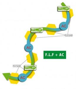 F,L,F + AC Ogasaka