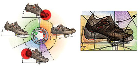 Forward backward pressure inside the shoe and illustration of sway
