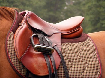 saddle_38