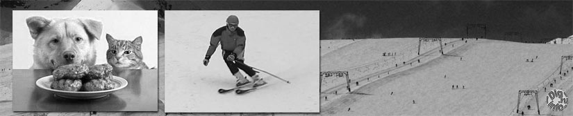 Slalom trainings and free skiing